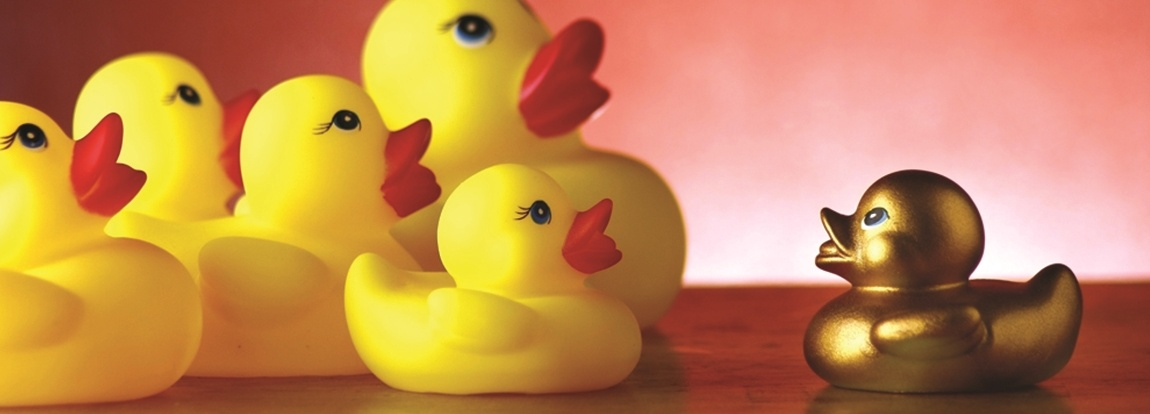 Are-your-ducks-in-a-row_2464_40165492_0_14138997_1150.jpg
